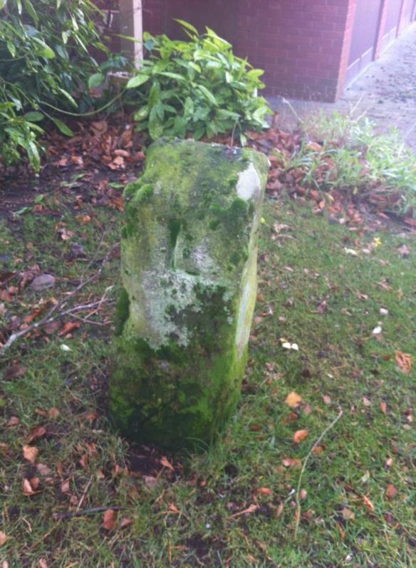 leomansley stone 2