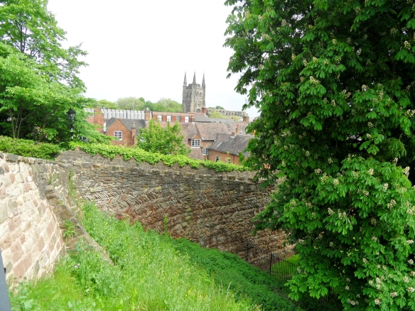St Editha's from Tamworth Castle
