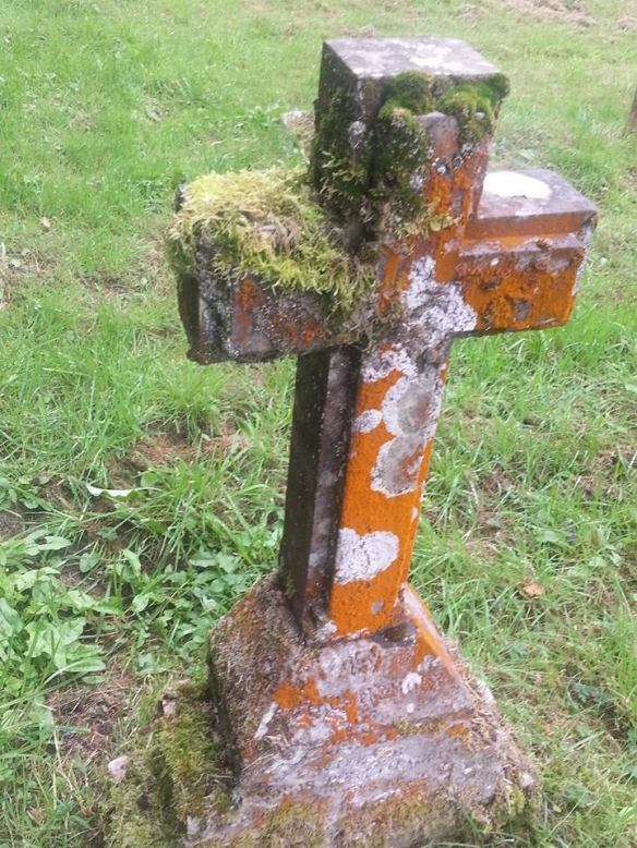 Lichen gravestone Blithfield