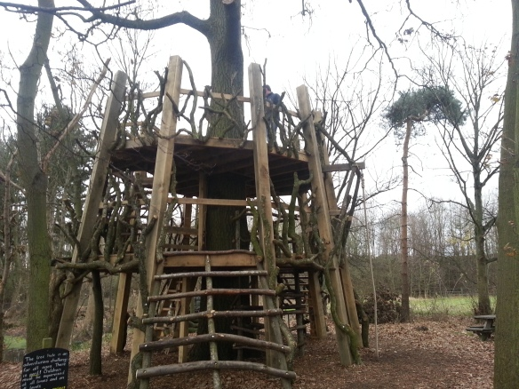The Moseley Old Hall Tree House