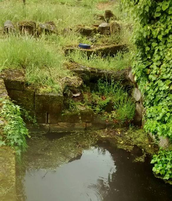 Georgian Plunge Pool over chalybeate spring known as 'The Lord's Well'