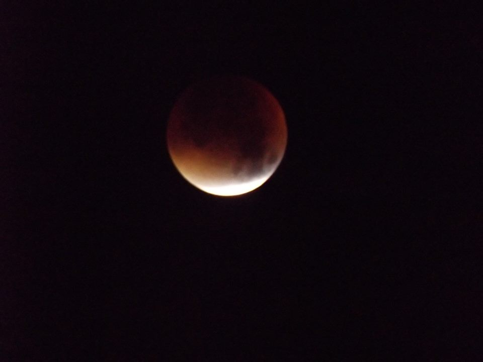 Blood Moon. Just in case you didn't see one of the three million photos of it shared online,