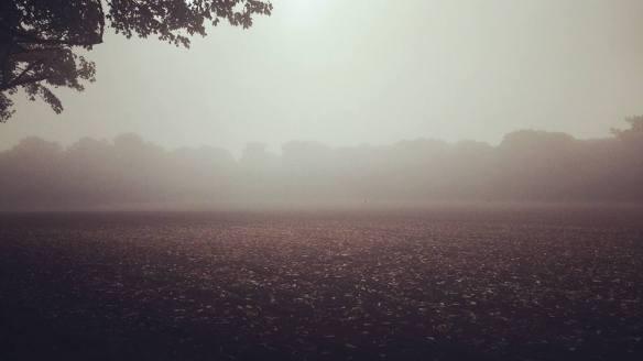leomansley-mist