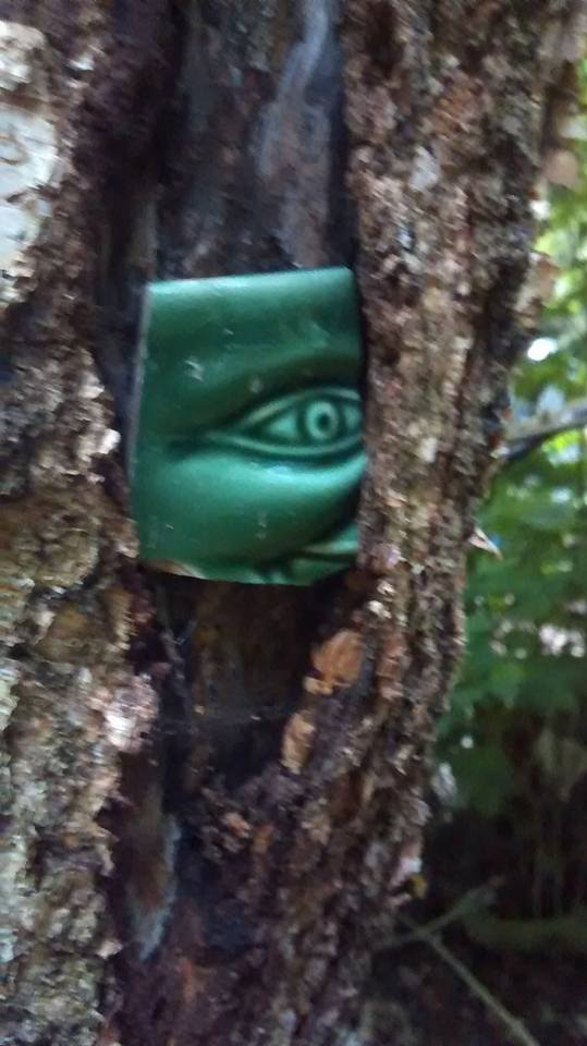 woods-june-2016-6