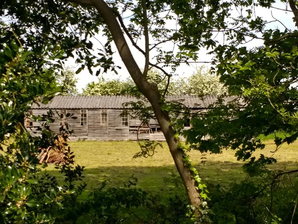 Fradley shed